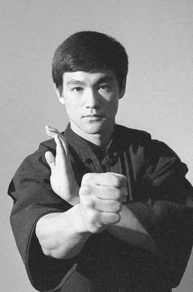 Bruce lee hegel dissertation